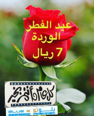 Special offer eid roses 7 QR