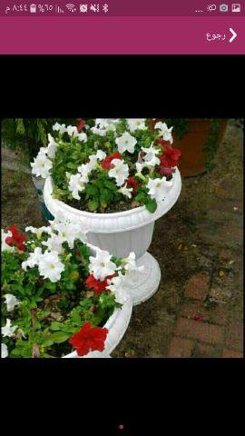 أحواض زراعة