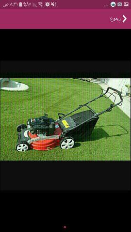 قص وتنظيف الحدائق المنزلية بأسعار مناسبة