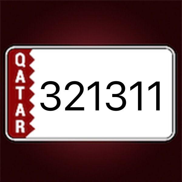 321311