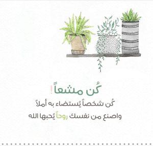 مدرس تأسيس ابتدائي اردني