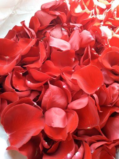 بتلات الورد الأحمر الطبيعي ،
