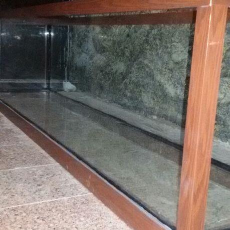 حوض أسماك جديد