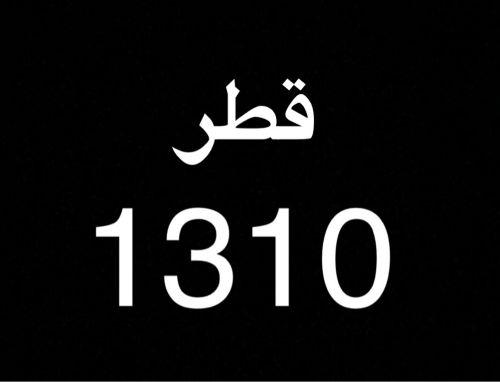 مطلوب رقم 1310