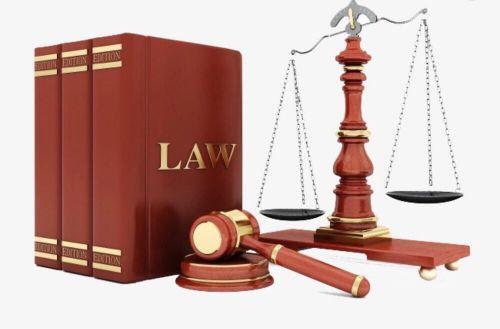 محامى مصرى