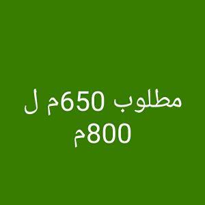 مطلوب  أرض عين خالد من 650م ل 800م