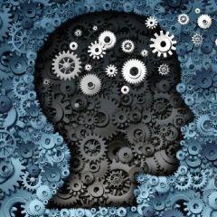 تدريس مواد فلسفية وعلم نفس واجتماع