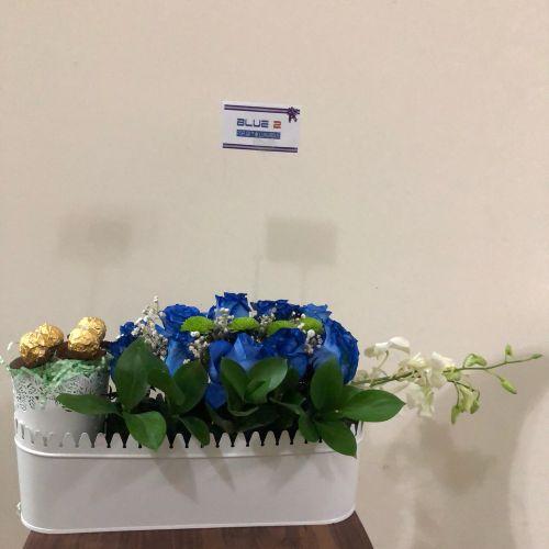 هدية لصديق أو مولود أو مكتب