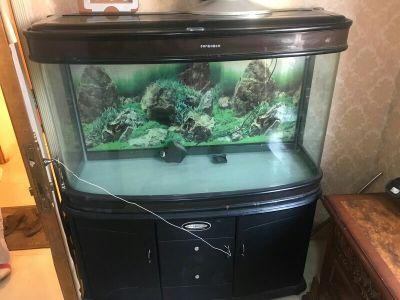 حوض سمك للبيع بحاله جيده