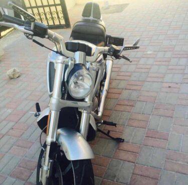 بيع دراجة هارلي في رود