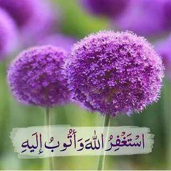 محفظة قرآن و مدرسة تأسيس لغة عربية