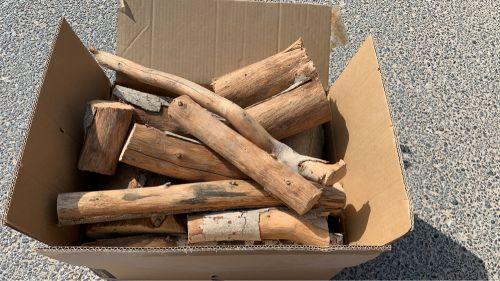 خشب سدر للبيع