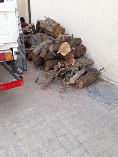 تقطع الأشجار وخلع النخل وتوريد السماد