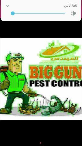 مكافحة الحشرات والقورد والقضاء عليها
