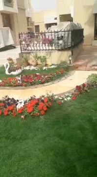 زراعة وتنسيق الحدائق