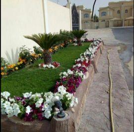 زراعة وتصميم الحدائق