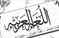 مدرس عربي متخصص