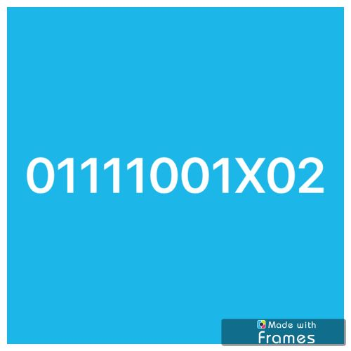 رقم اتصالات مصري