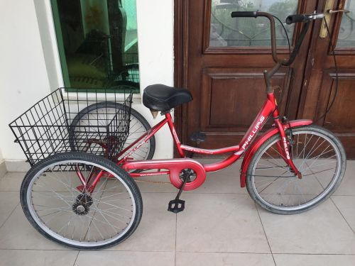 3 wheel cycle for sale SIZE 24