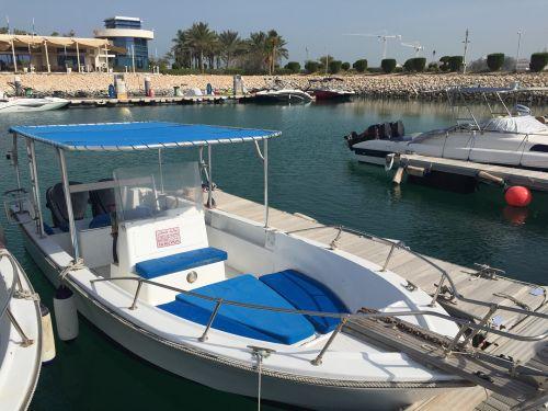 Gulf craft 24 ft