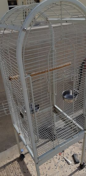 cage for big birds