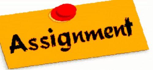 Assignment writing guidance/help