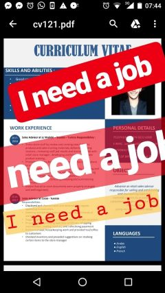i'm sales advisor, i need a job