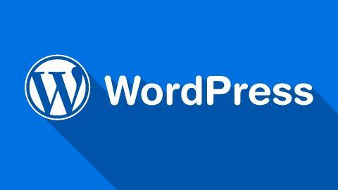 Website content creation & Management