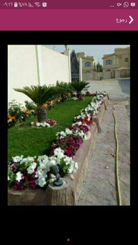زراعة الورود